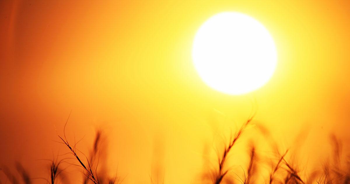 आठ मे पर्यंत उष्णतेची लाट