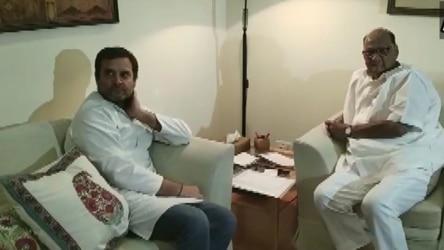 शरद पवारांचा मोठा निर्णय; राष्ट्रवादी पक्ष काँग्रेसमध्ये विलीन होणार...? राहुल गांधींच्या भेटीनंतर चर्चांना उधाण