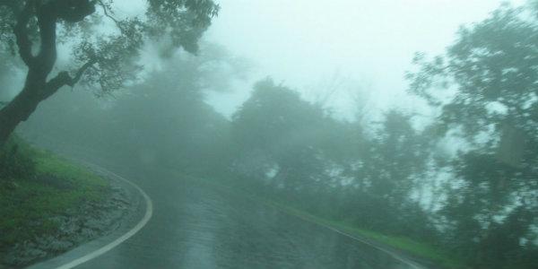 महाबळेश्वरमध्ये जोरादार पाऊस ...