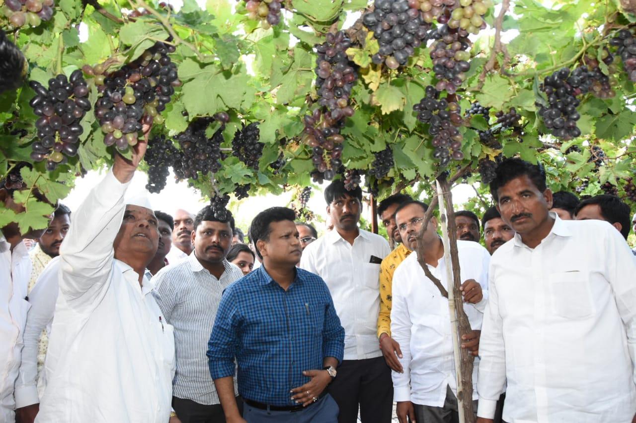 जिल्हाधिकारी नवल किशोर राम यांनी अतिवृष्टीने बाधित शेतकऱ्यांच्या पिकांची केली पाहणी